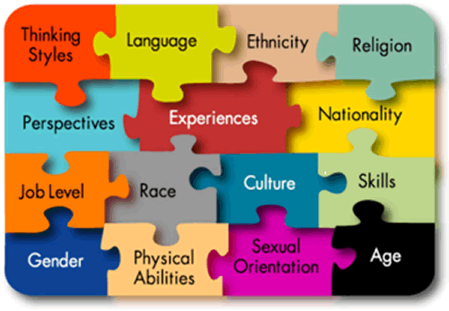 My Essay Writer Blog: Essay Writing Sample: Cultural Competence